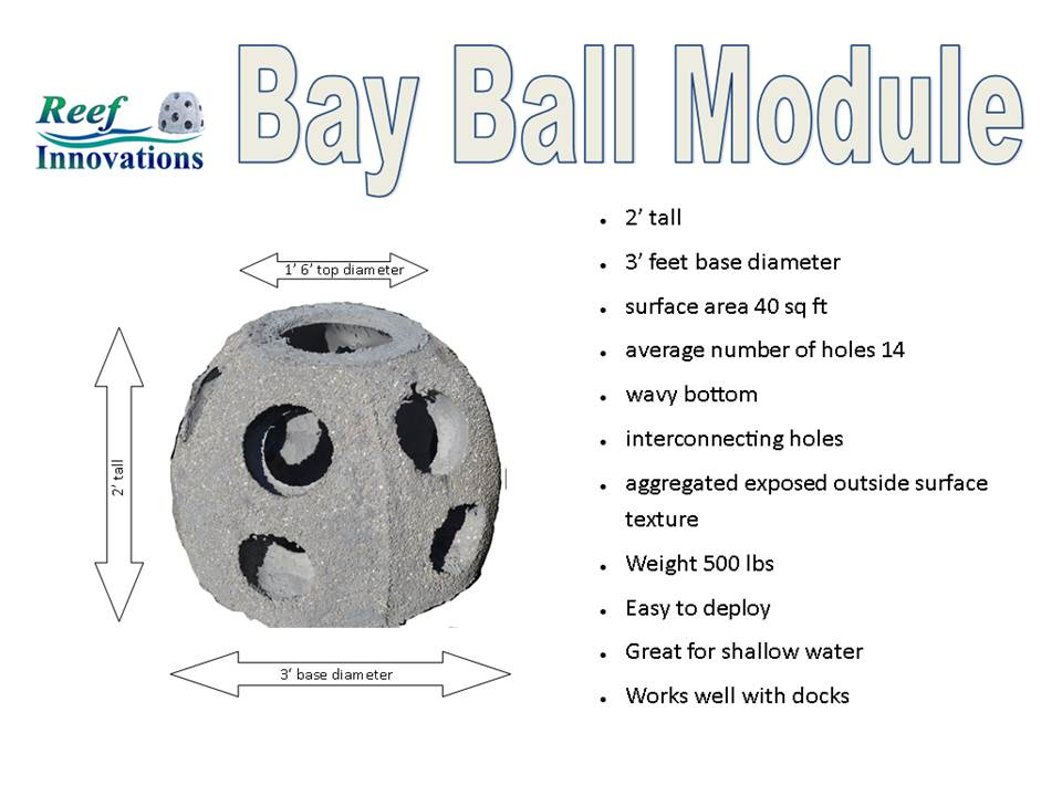 Bay Ball