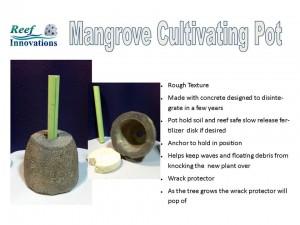 Mangrove Pot