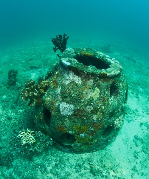 Reef Ball Dive Sites