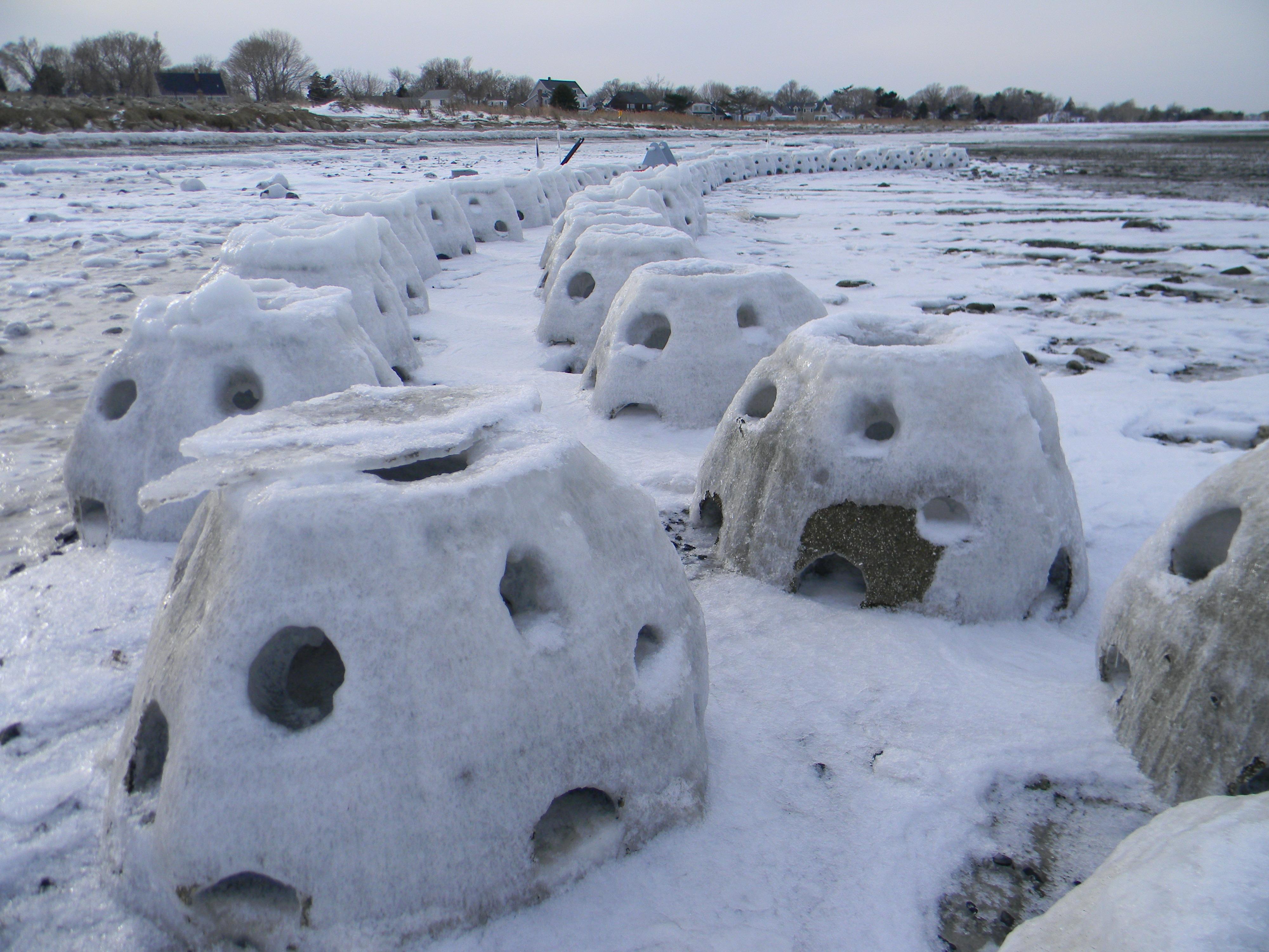 CT Frozen Reef Ball
